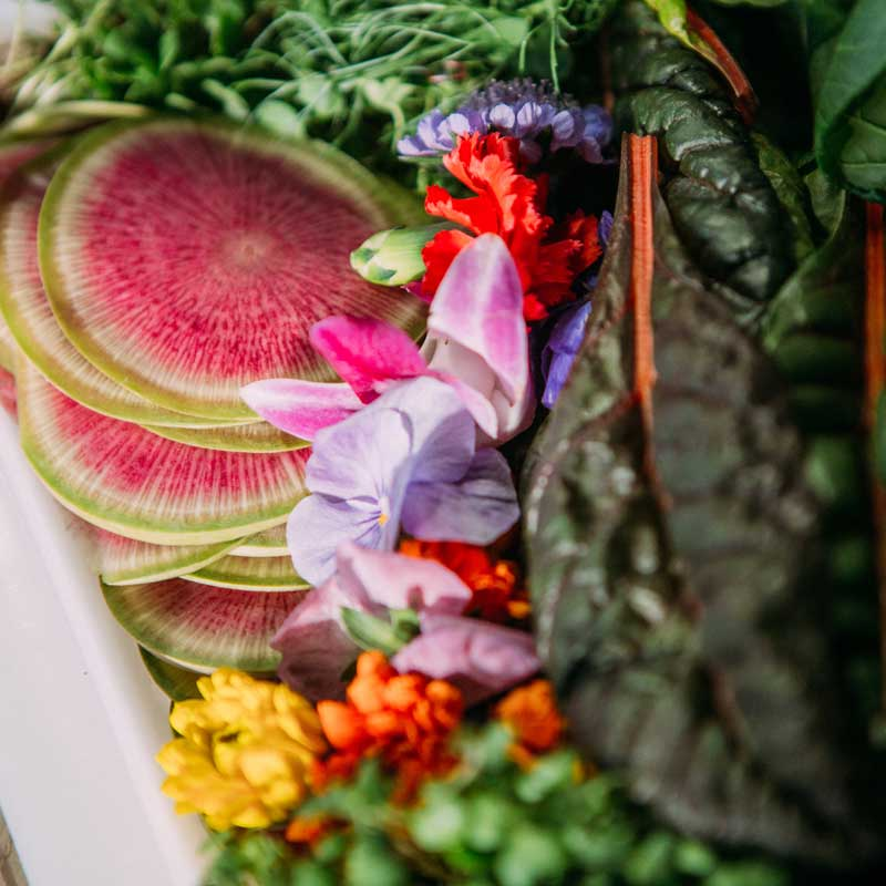 Organic Caterer, The JDK Group provides menus with organically-grown produce